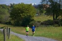 People Running on Path